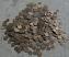 indian vintage coins