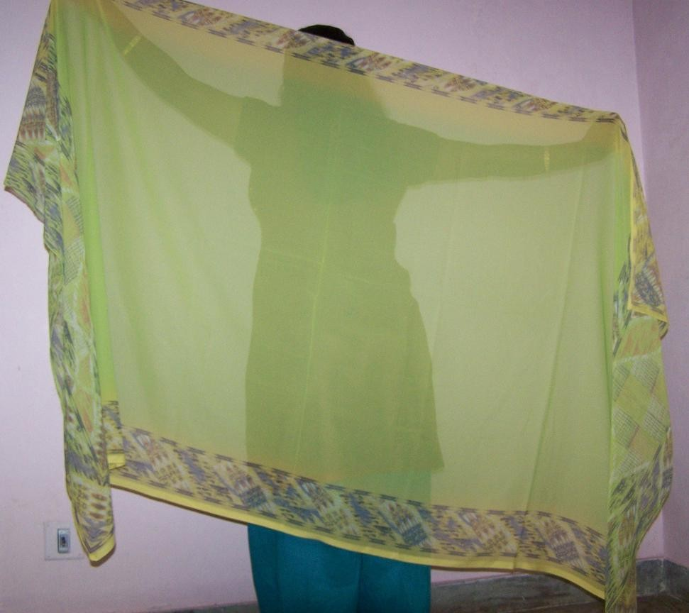 Belly dance veils on sale 17