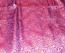 Brocade 19