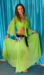 Belly dance beginner costume