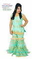 Bollywood costume 52