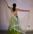 Belly dance veils on sale 12