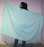 Belly dance veils on sale 28