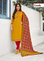 Indian salwar kameez 74