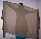 Belly dance veils on sale 13