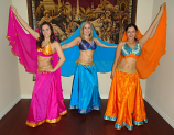 Bollywood costume 14