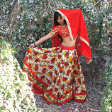Bollywood costume 5