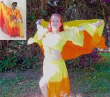 Belly dance chiffon petal skirt and veil
