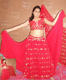 belly dance doubler layer zari skirt