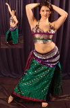 Sari Panel Skirt and Choli