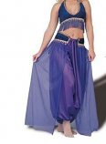 Belly dance harem costume