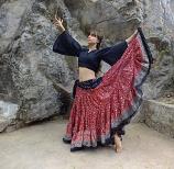 Red Maharani skirt 10