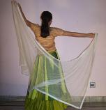 Belly dance veils on sale 12