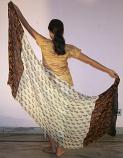 Belly dance veils on sale 14