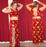 Belly dance panel skirt costume