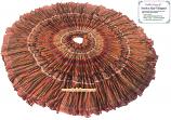 rangoli gypsy skirt 7