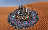 Kalbeliya costume 5